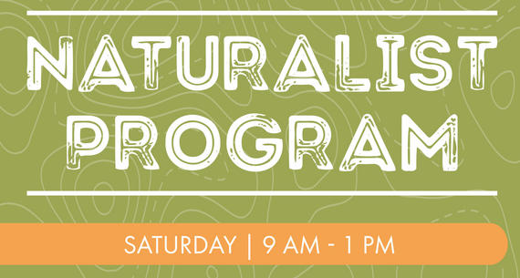 naturalist program flyer at la cantera